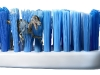 escova dentes 012